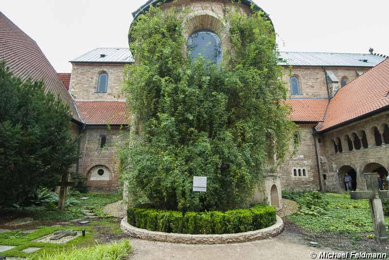 ... Walsrode – Hannover – Hildesheim - Van der Valk Hotel Hildesheim