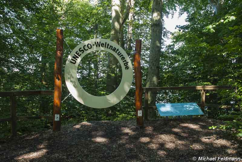 UNESCO Weltnaturerbe Jasmund