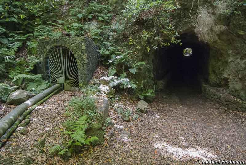 tunnel im urwald von los tilos. Black Bedroom Furniture Sets. Home Design Ideas